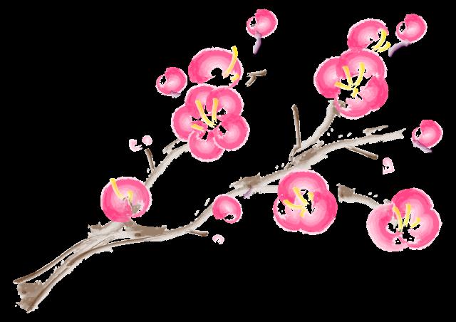 ひな祭り 桃の花